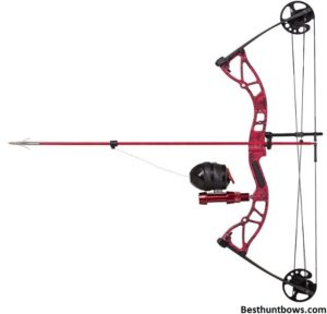 Cajun Shore Runner Kit Bowfishing Bow
