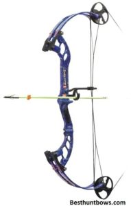 Mudd P S E Dawg Bowfishing Bow